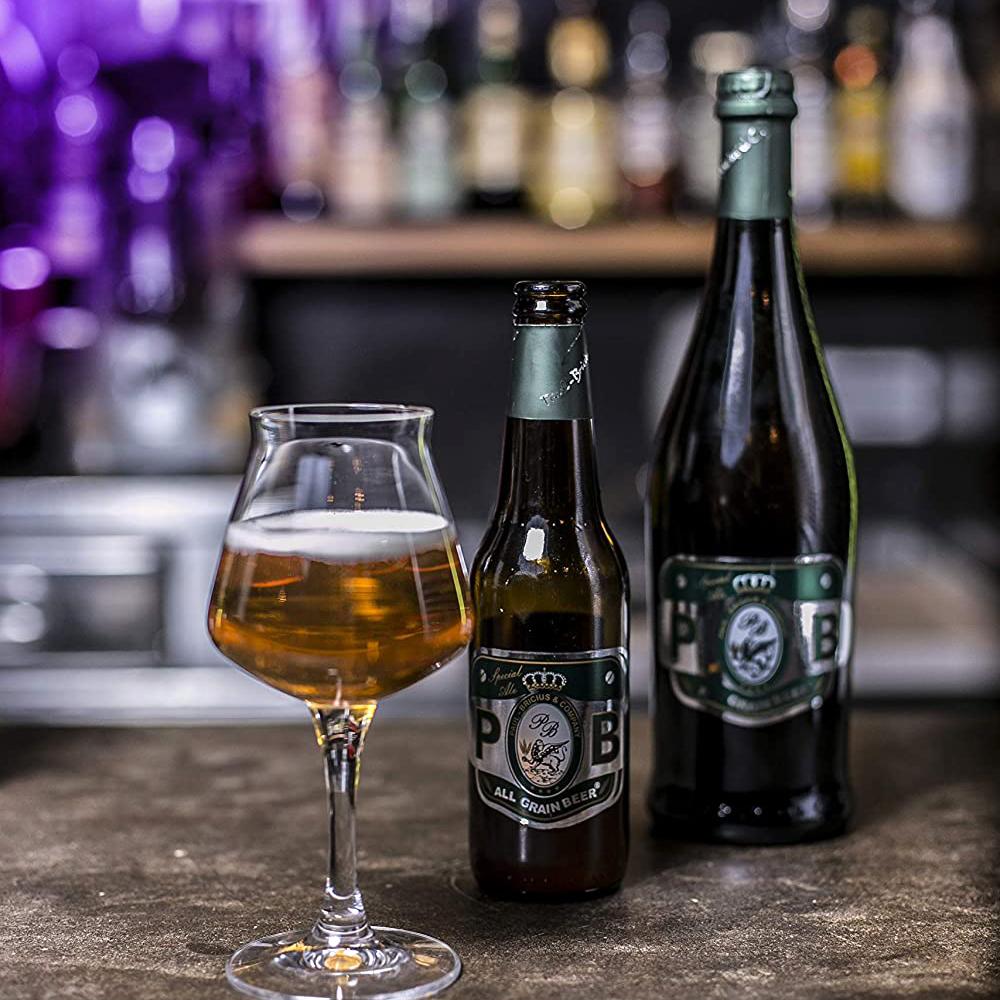 Special Ale in bottiglia da 0.33 cl